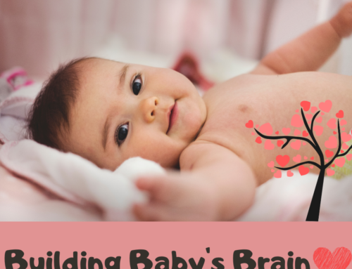 Building Baby's Brain