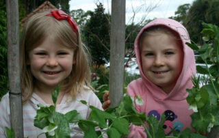 Grow your own for children